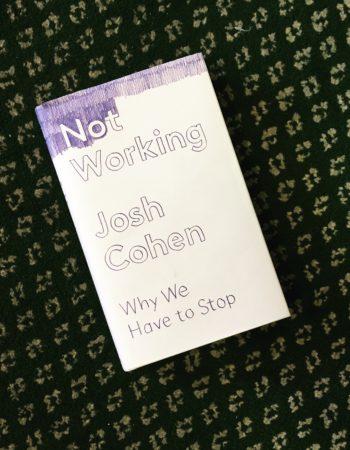 Josh Cohen: Not Working